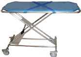 gas assisted transport table, Click for Details!