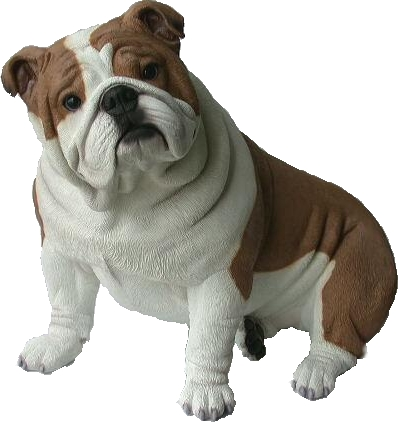 lifeBulldogFawn